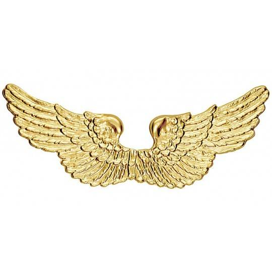 Golden angel wings